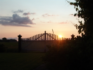 1379744_fence_at_sunset